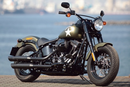 no164_flss-softail-slim-s_01