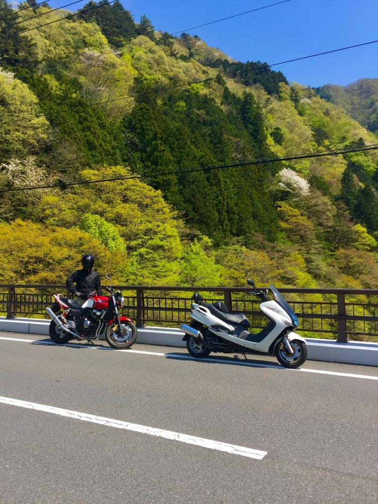 森とバイクと