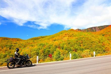 秋色に染まる山