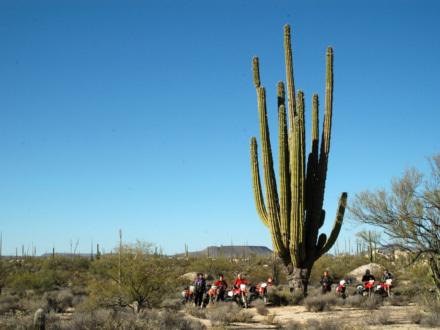 風魔プラス1ツーリング メキシコ バハ・カリフォルニア半島縦断オフロード7日間