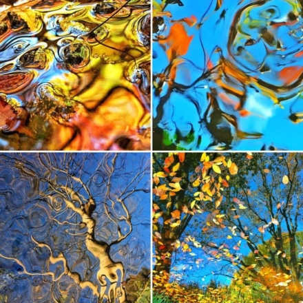 iPhoneで撮影した幻想的な写真たち!藤原かんいち氏の写真展・水惑景が渋谷で4月7日からスタート
