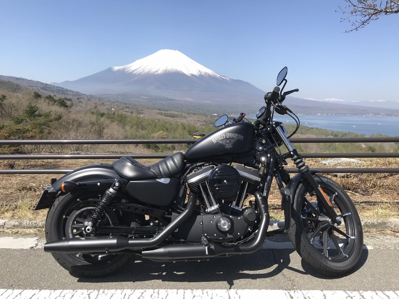 富士山は雄大だ