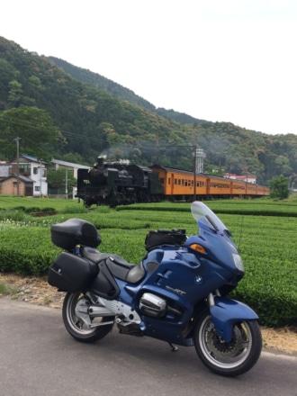 茶畑とSL