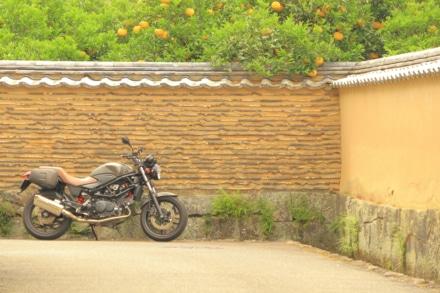 ミカン色の土塀とVTR