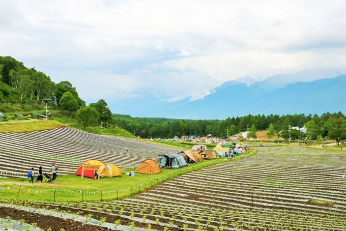 THE CAMP BOOK 2019 キャンプサイト風景