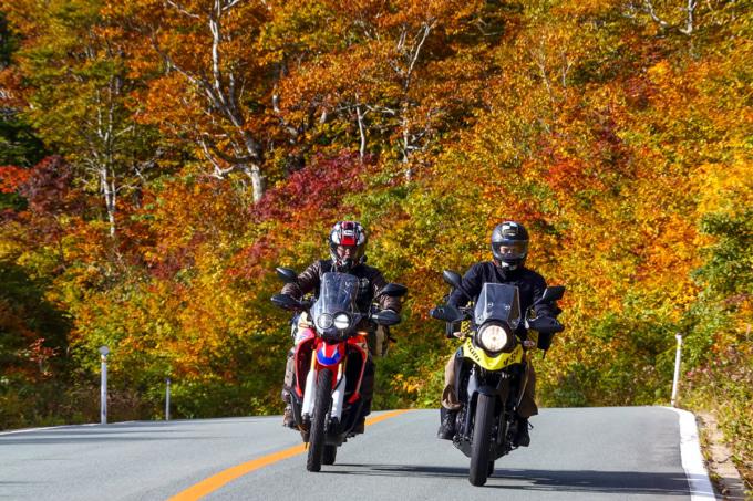 紅葉がきれいな山道を走る2台のバイク